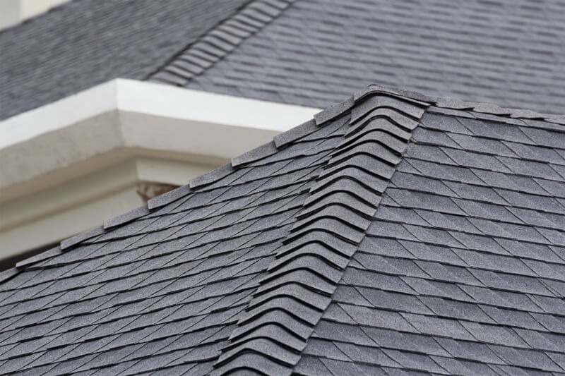 Asphalt Shingle Maintenance