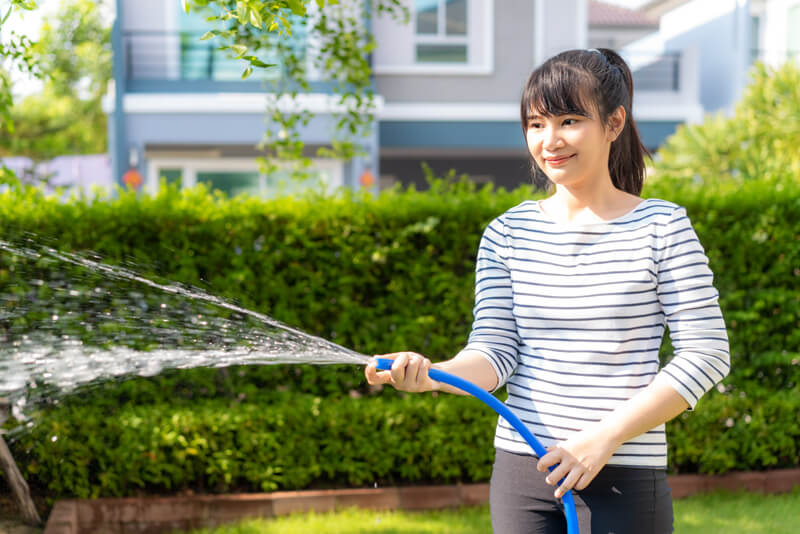 Solar Panel Cleaning Tips