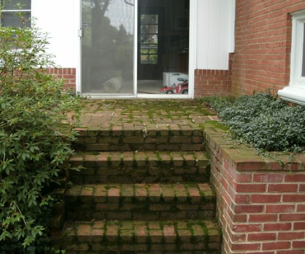 Brick Steps – Before Cleaning